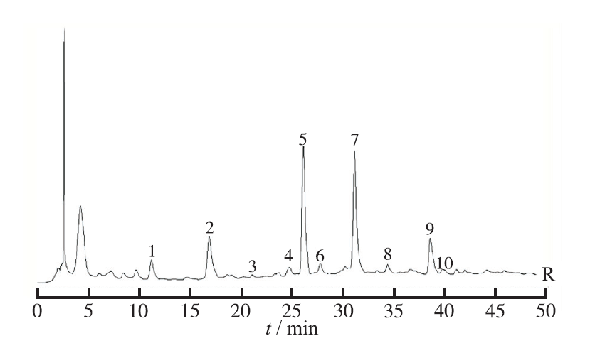 Fingerprint Analysis of the Chitosan <i>Shanling Quban</i